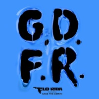 Flo RIDA - Going Down For Real