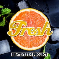 BEATSYSTEM PROJECT - Fresh (rmx)