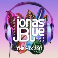 Jonas BLUE - Don't Call It Love
