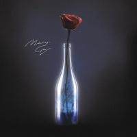 MARY GU - Пьяный Романтик (Kolya Funk & Shnaps rmx)