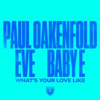 Paul OAKENFOLD - What's Your Love Like